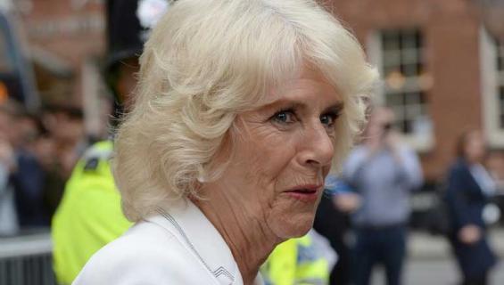 Diana ei sulattanut Charlesin ja Camillan suhdetta.