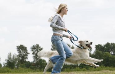 Koiran kanssa kuntoilu tekee molemmille hyvää.