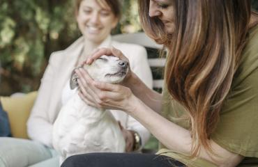 Italiassa lemmikit voivat olla perheenjäseniä.