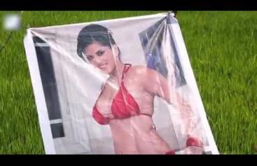 Mitä ihmettä? Maanviljelijä laittoi pellolleen julisteen pornotähdestä! Katso video!