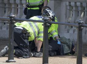 Buckinghamin palatsinedustalla tehtiin keskiviikkona pidätys.